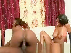 Big Booty Black Ghetto Tramps Riding One Dick Together
