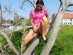 Von Baum gepisst