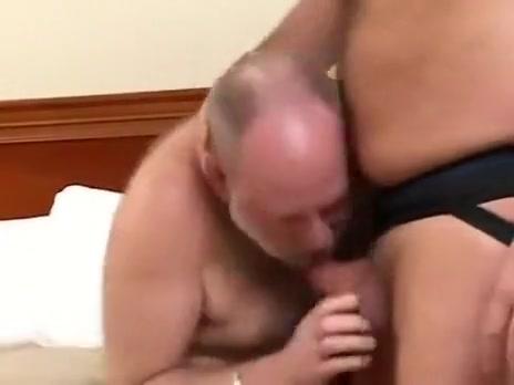 dos osos sexo duro