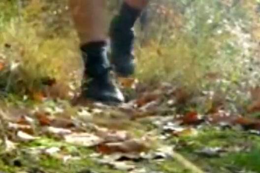 Walk in the Woods -1