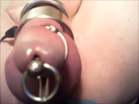 day 2: long electro edge plugged cock